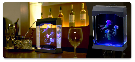 aquarium meduse maison avie home. Black Bedroom Furniture Sets. Home Design Ideas